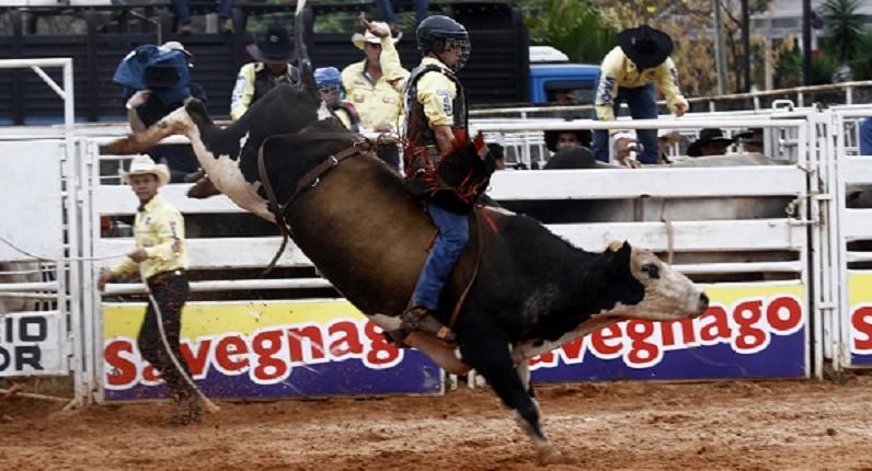 Festa do Peão de Barretos abre inscrições para Rodeio Júnior 41
