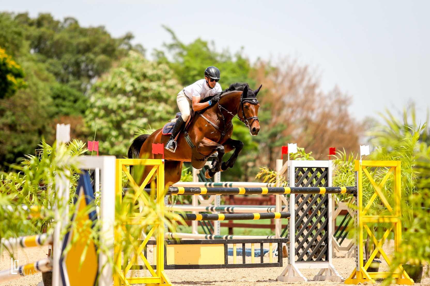 Brasileiro de Cavalos Novos no Haras Agromen: boa participação e nível técnico 41