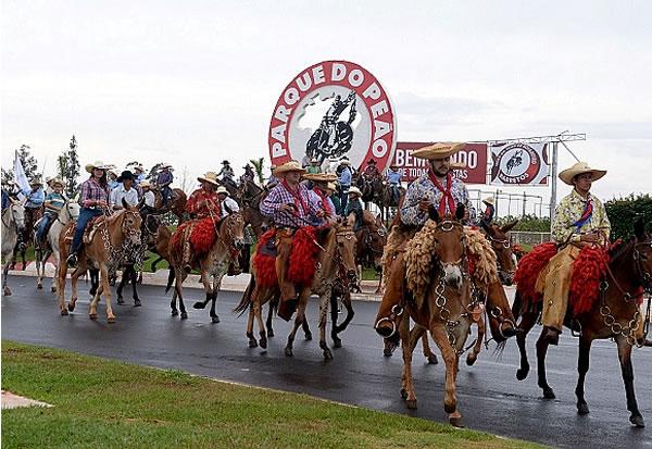 5º Barretos Muar do Sertão reúne animais e comitivas de todo o país 41