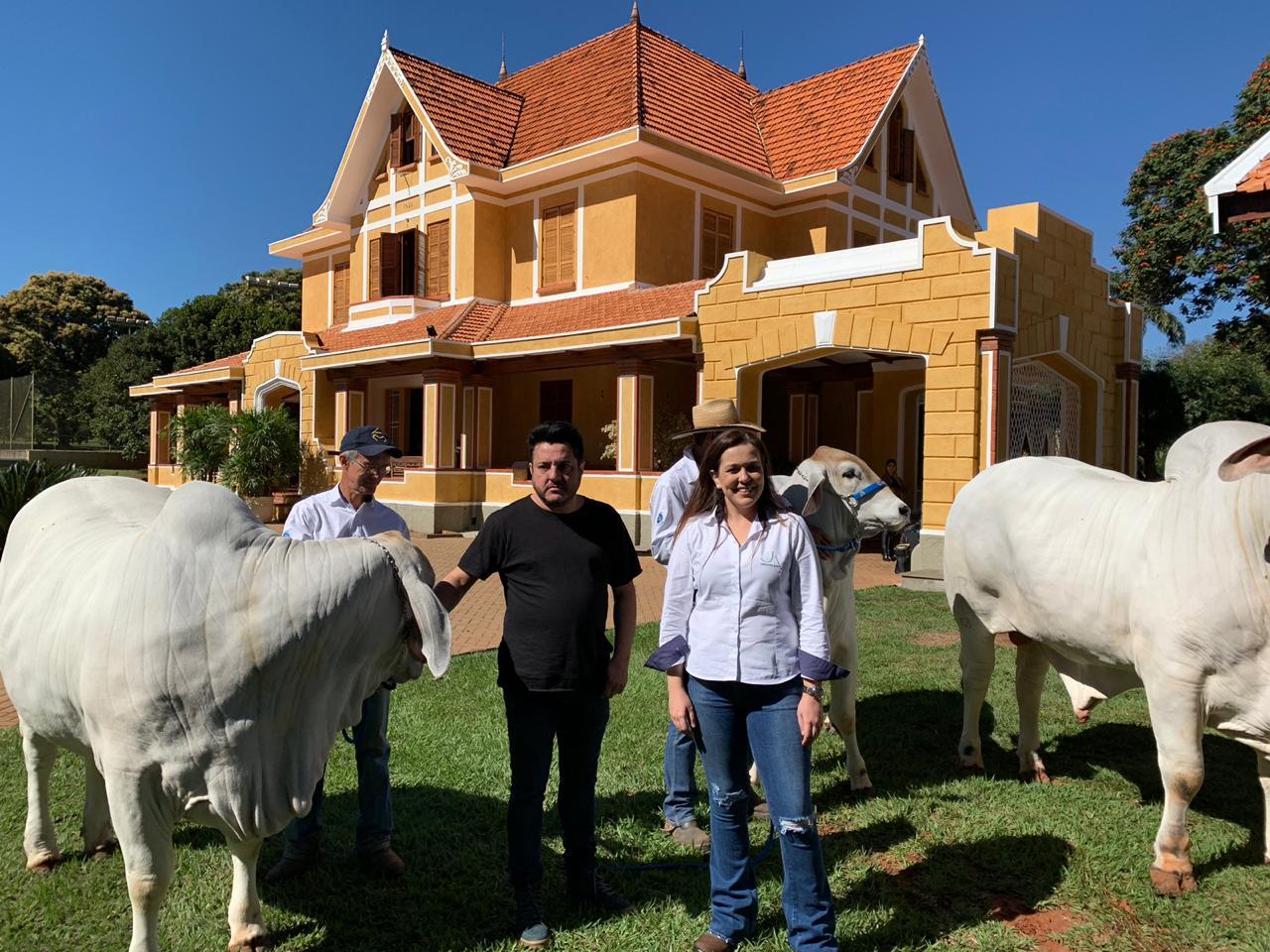 Bruno, da dupla Bruno & Marrone, visita Fazenda Água Milagrosa, berço da raça Tabapuã 41