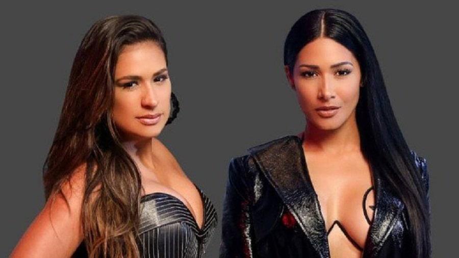 Simone e Simaria se destacam nas publicidades durante a pandemia! 42