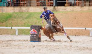 Halter e Três Tambores são os temas da 19ª edição do Programa do Cavalo Árabe 16