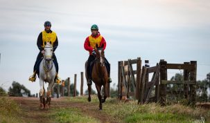 Brasileiro montando Cavalo Árabe fica no Top 10 do Ranking Mundial de Enduro 17
