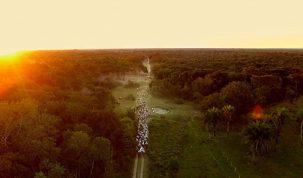 Documentário no Pantanal é destaque na programação de cinema da TV Aparecida 24