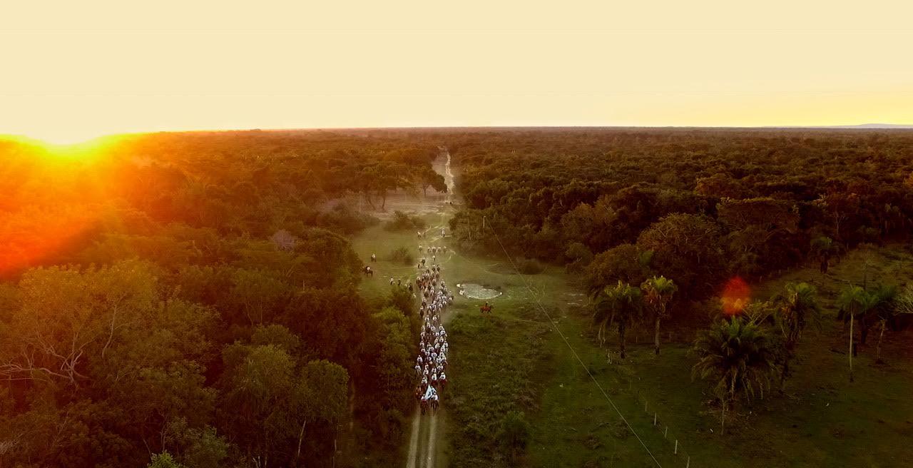 Documentário no Pantanal é destaque na programação de cinema da TV Aparecida 41